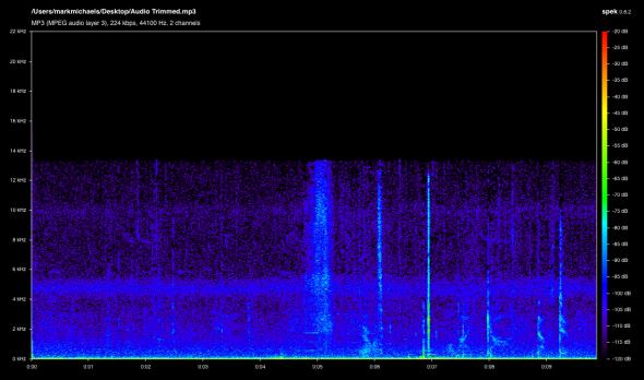 Audio Trimmed